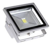 ������������ ��������� LED Jazzway PFL -10W �������